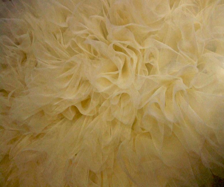 "I am working on my ""big"" Tulle dress, close up."