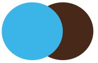 Sky Blue + Chocolate Brown
