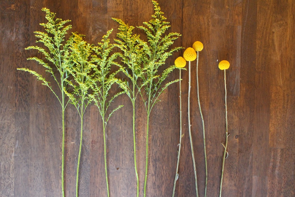 Goldenrod and Billy Buttons