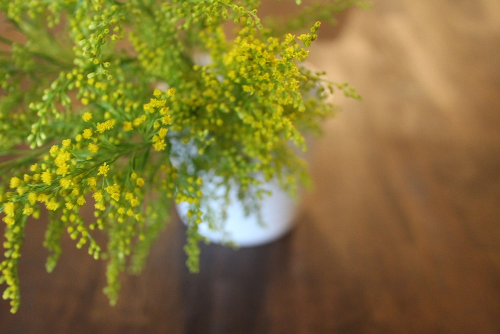 Goldenrod bouquet