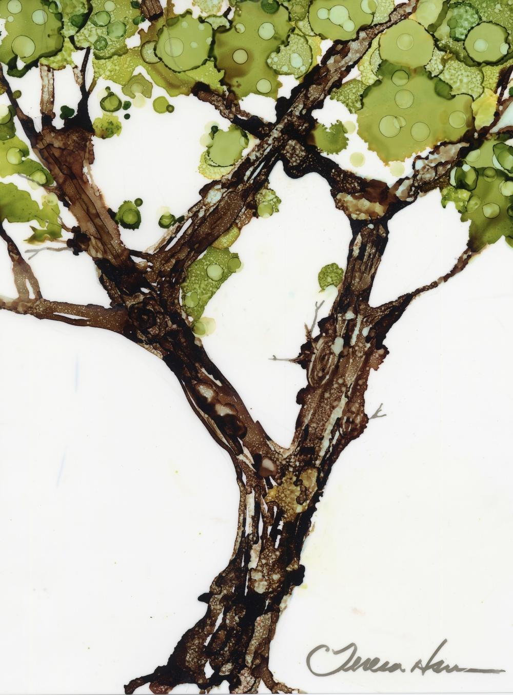 TreeSM.jpg