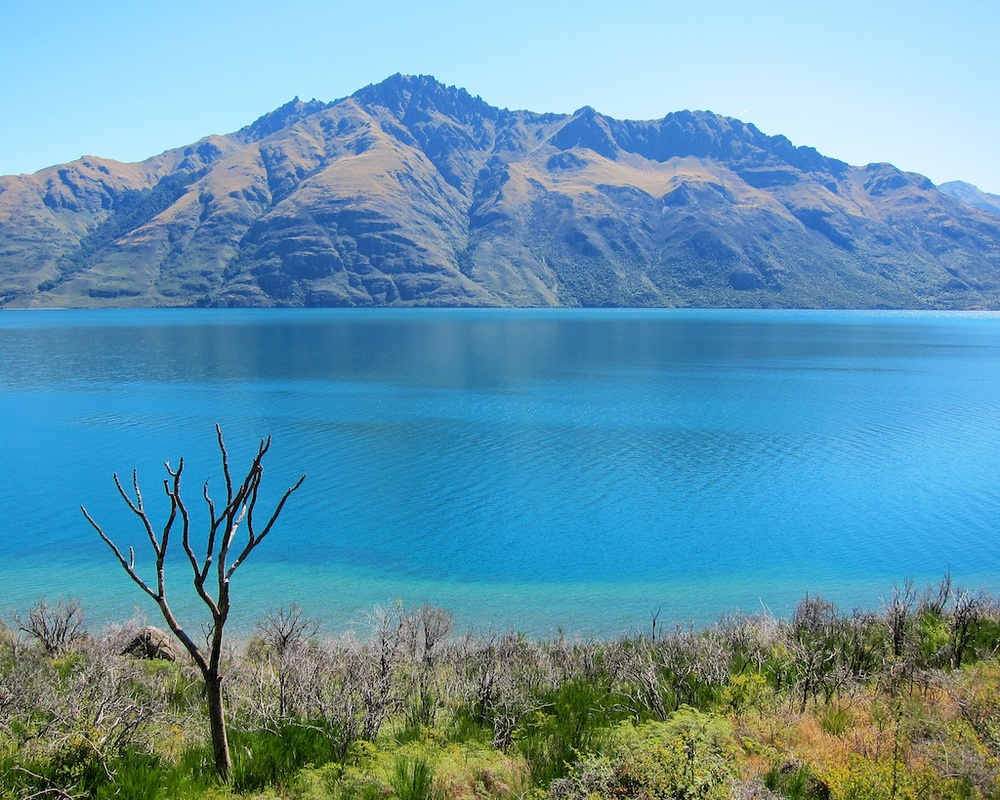 New Zealand Itinerary Queenstown www.glutenfreetravelette.com