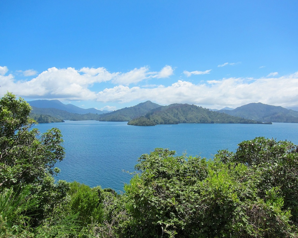 New Zealand Itinerary Ferry Ride www.glutenfreetravelette.com