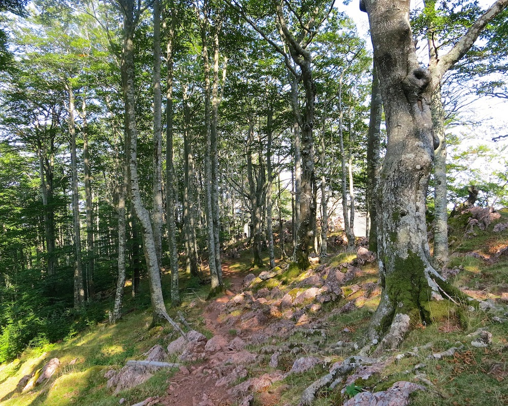 Frontier Views Hike Spain France 16.jpg