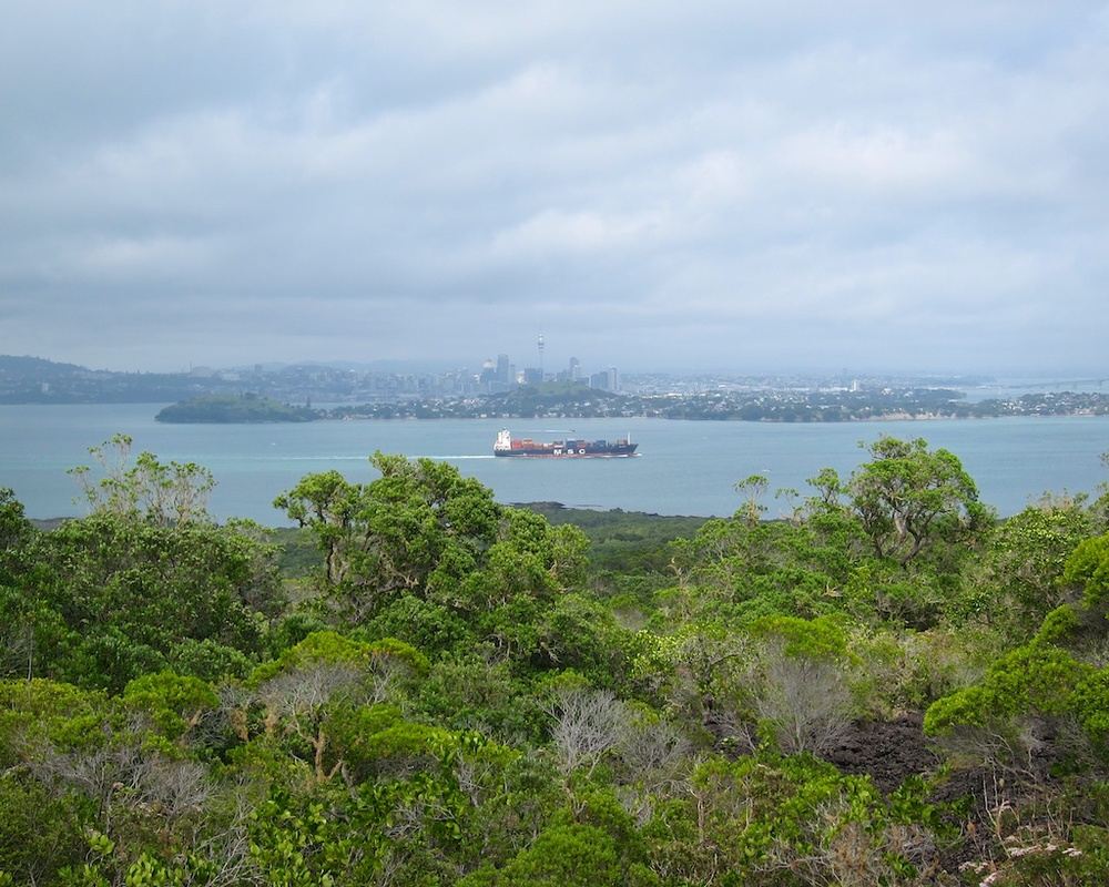 Hike Rangitoto Island New Zealand