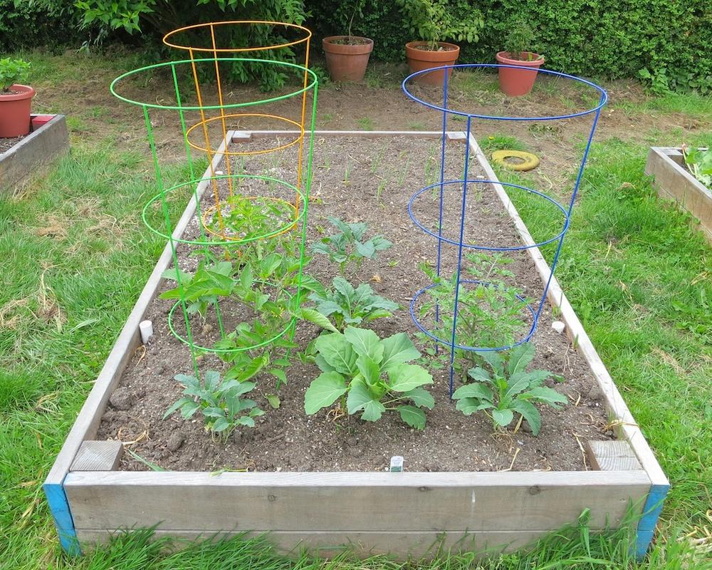 The Edible Garden Project www.glutenfreetravelette.com