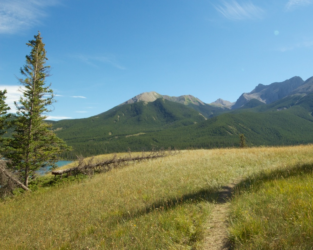 Overlook Hill at Talbot Lake, Jasper National Park