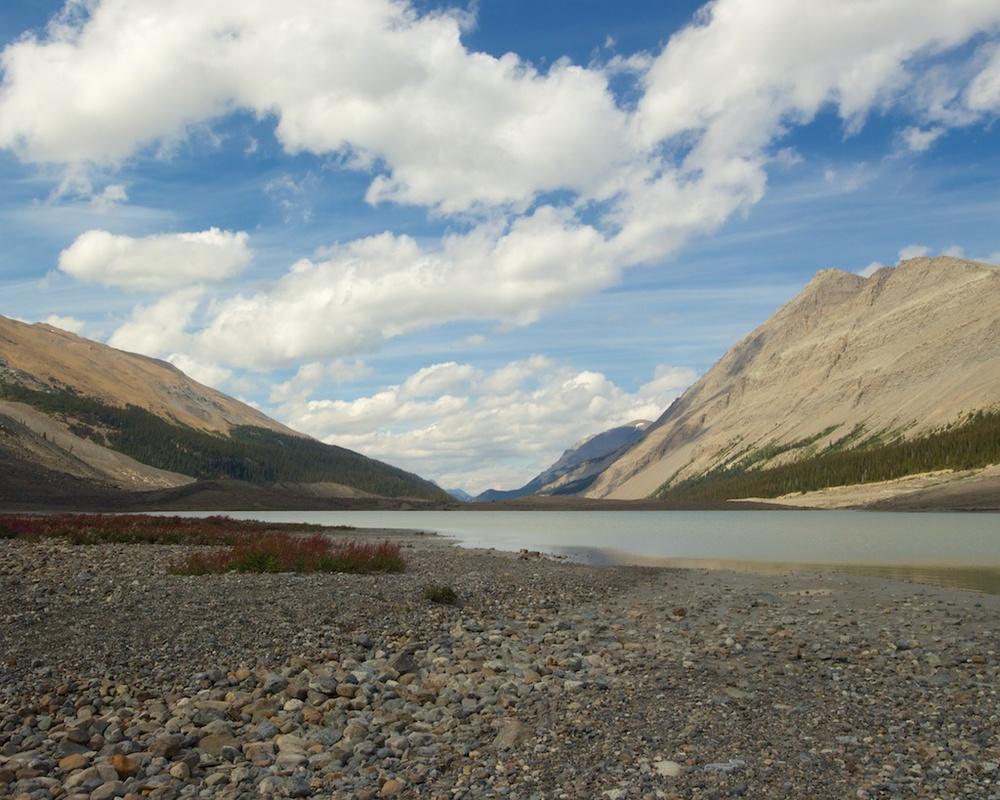 Glacial Pond, Jasper National Park, Alberta, Canada