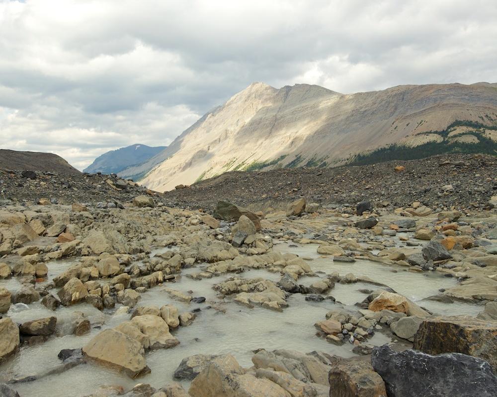 Glacial Stream Jasper National Park, Alberta, Canada