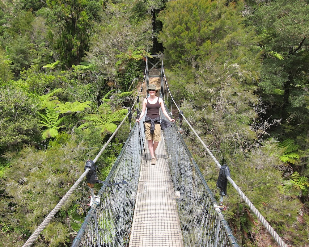 Suspension Bridge, Abel Tasman Coast Track, New Zealand
