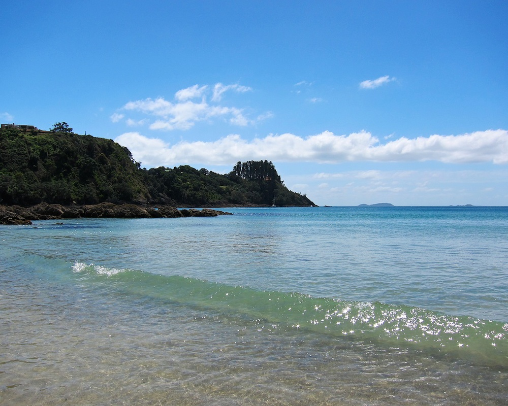 Scenes from New Zealand: Waiheke Island