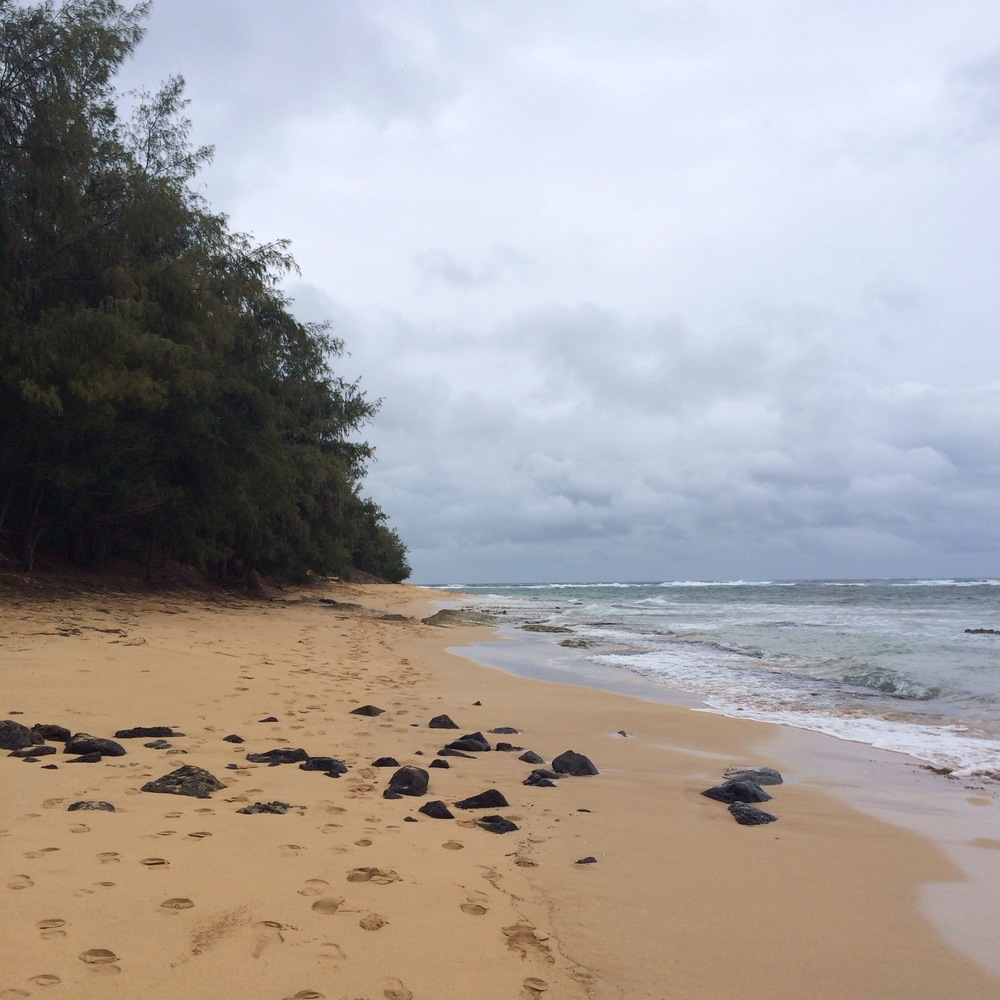 Kauai's South Shore Beaches