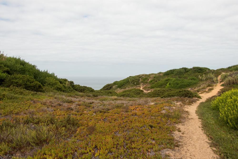 WanderLog_Portugal_PraiadaGrande-1.jpg