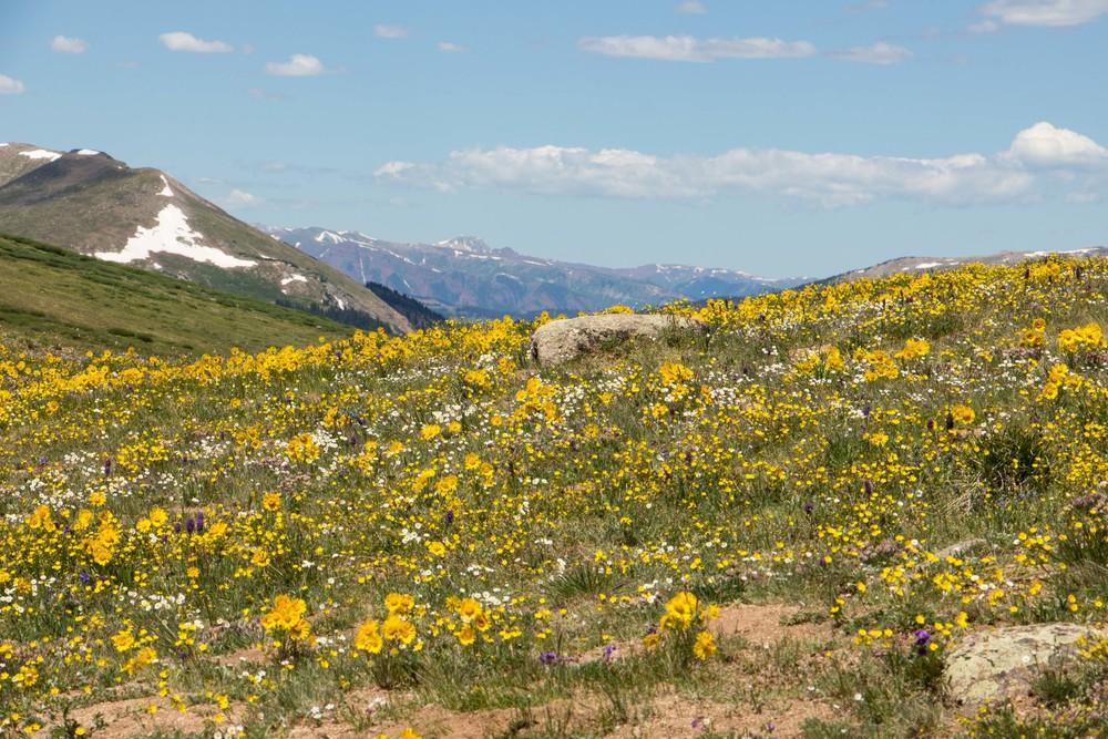 Colorado-14.jpg