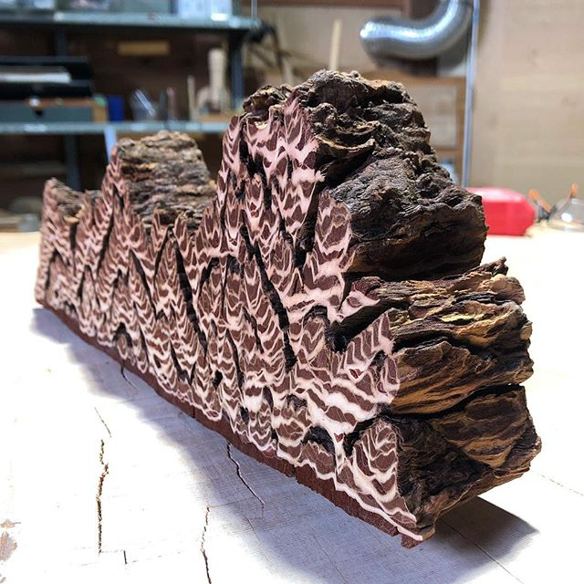 Cross section of bark from an 800 year old Douglas Fir. #sculptural #wood #ancient #giant #design #art