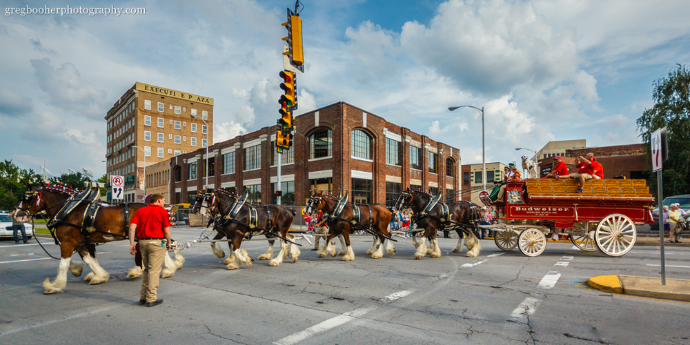 The Budweiser Clydesdales make their way across Cumberland Street with the Executive Plaza and future home of the Birthplace of Country Music in the background.