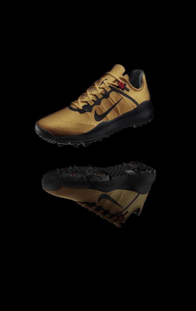 Gold-Shoe.jpg
