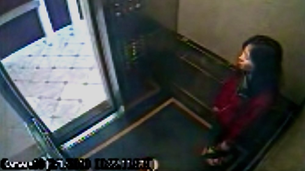 Surveillance camera footage released by the LAPD shows Elisa Lam in one of the Cecil Hotel's elevators -- this was her last known sighting.