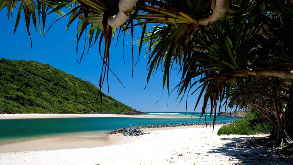 Tallebudgera Creek - Palm Beach