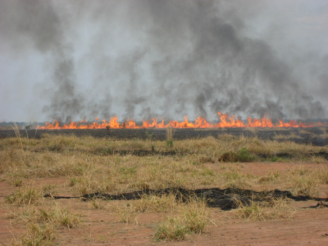 "Above: ""Fires in the Amazon, such as this pasture blaze in the Brazilian state of Mato Grosso, may swamp the forest's ability to take in more carbon dioxide than land use releases, according to Penn State geographer Jennifer Balch."" - Penn State News"