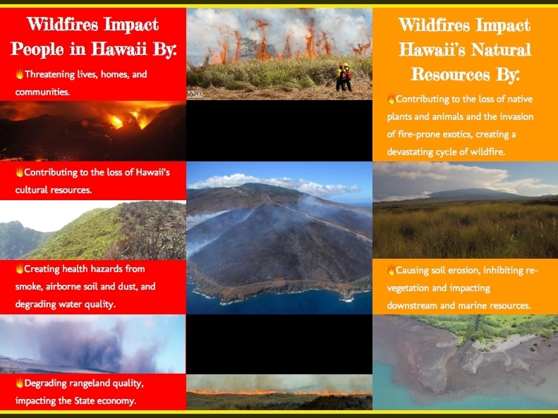 HWMO Wildfire Impact People in Hawaii Poster.jpg