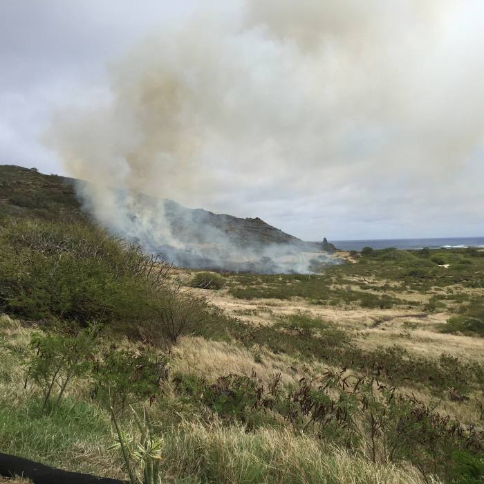 Credit: Tracey Nakama http://www.hawaiinewsnow.com/story/29234428/brush-fire-closes-kalanianaole-highway-near-sea-life-park