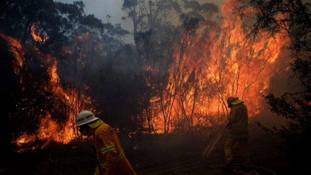 """NSW Rural Fire Service crews struggle to contain a bushfire around the Wentworth Falls escarpment.   Photo: Wolter Peeters"""