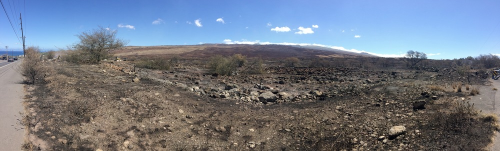 Aftermath of Kawaihae fire that burned from makai to mauka. (Pablo Beimler/HWMO)