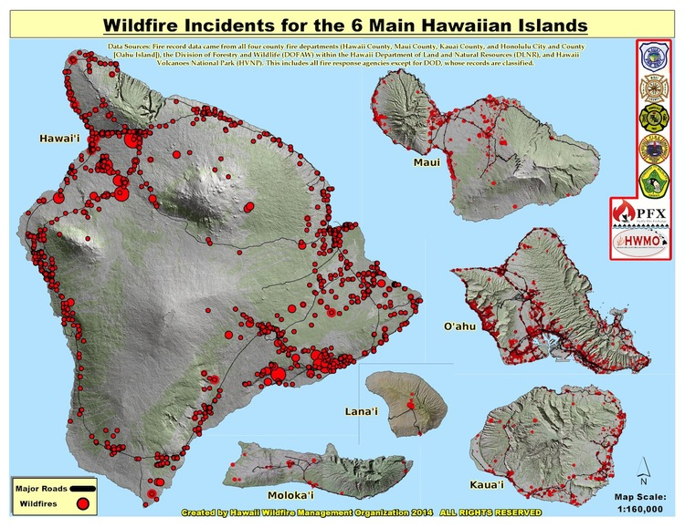 """ According to the Hawaii Wildfire Management Organization  , about 0.5% of Hawaii's total land area burns annually, as much or more than the proportion of land are burned in any other US state. In Hawaii, 98% of wildfires are human caused."""