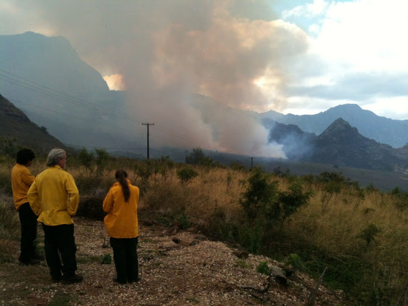 Three DOFAW firefighters watch as smoke billows from a distance. Credit: DOFAW.