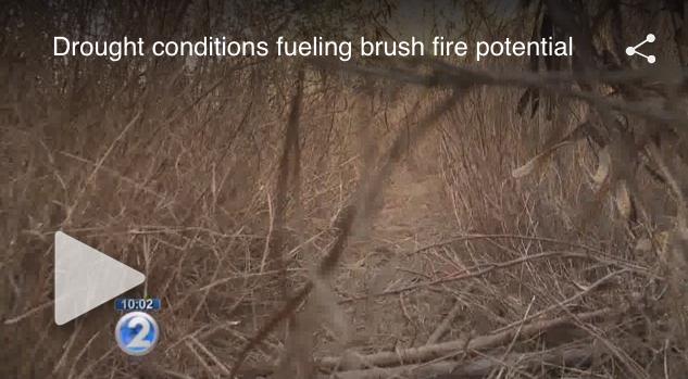 Screenshot from KHON2 video.