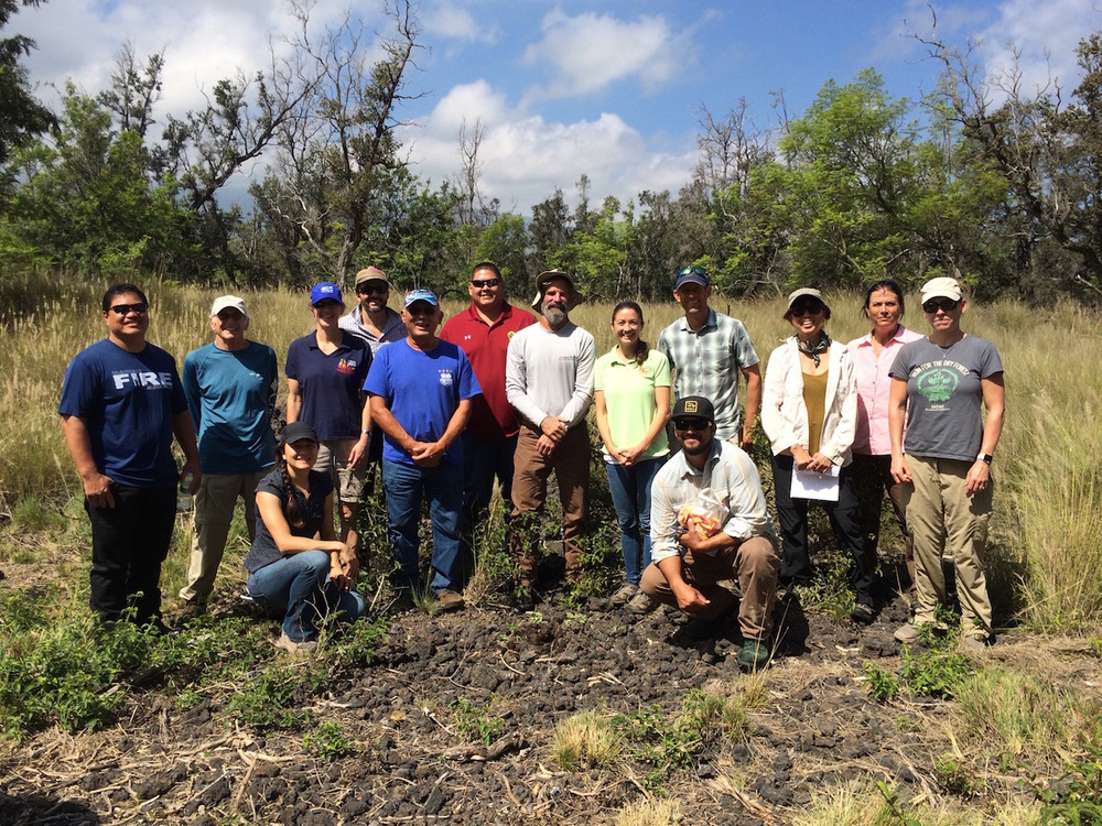 HWMO's staff, Board of Directors, and Technical Advisors with DLNR DOFAW and adjacent land managers.