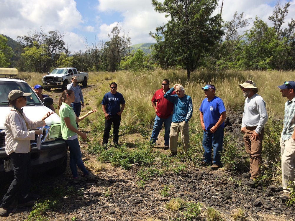 The group prepares to examine DOFAW's fuelbreaks and priority wildfire hazard areas.