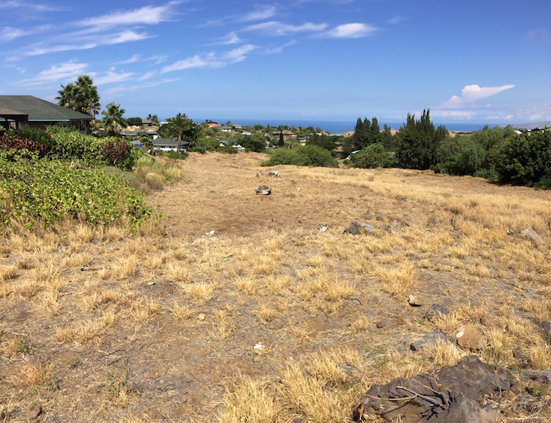A Waikoloa Village interior lot that the WVA recently created a fuelbreak for to protect neighboring homes.