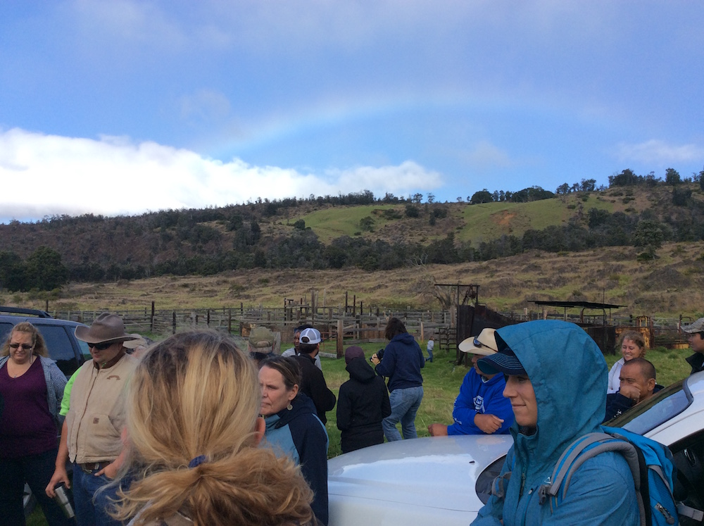 Morning rainbow to kick off the field tour of Kapapala Ranch.