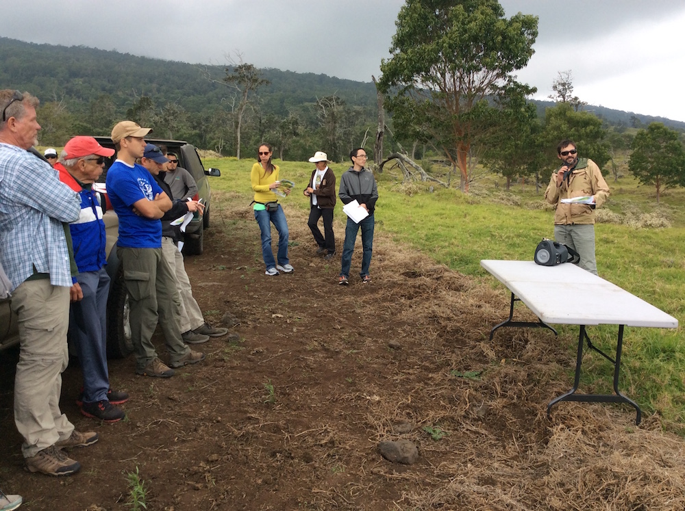 Clay Trauernicht (right) and Chris Wada (second from right) share economic analyses in front of a koa restoration plot.