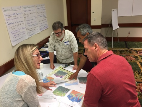 Breakout groups discussed strategies they would use to mitigate wildfire issues during a simulation exercise.