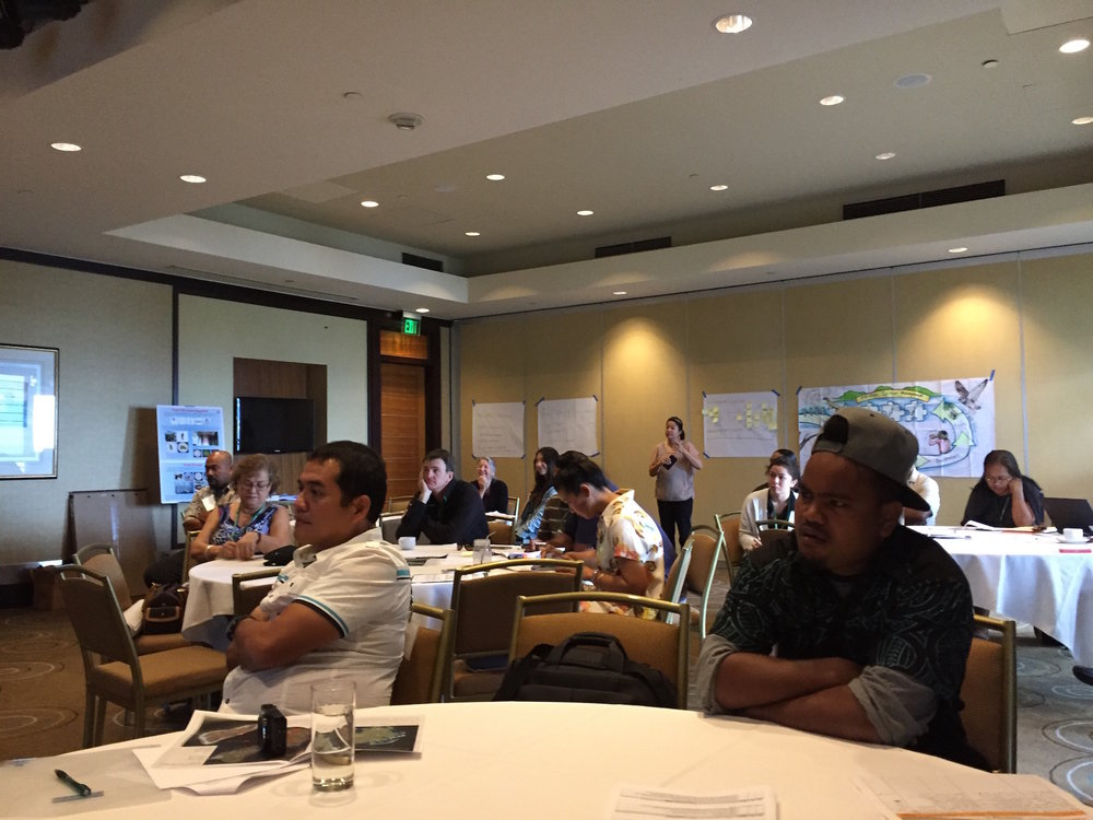Giving a workshop on community-based wildfire ignition management in Guam.