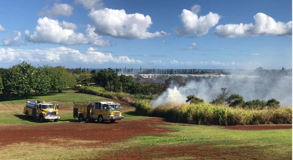 """HFD responds to an area near the Patsy Mink Park."" Credit- Hawaii News Now"