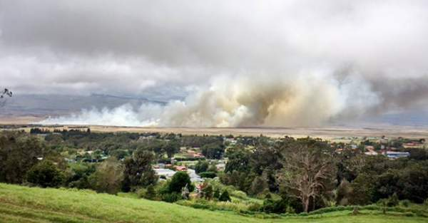 July 2017 brushfire that burned in Puukapu and towards the highway. Credit: Hawaii Tribune Herald