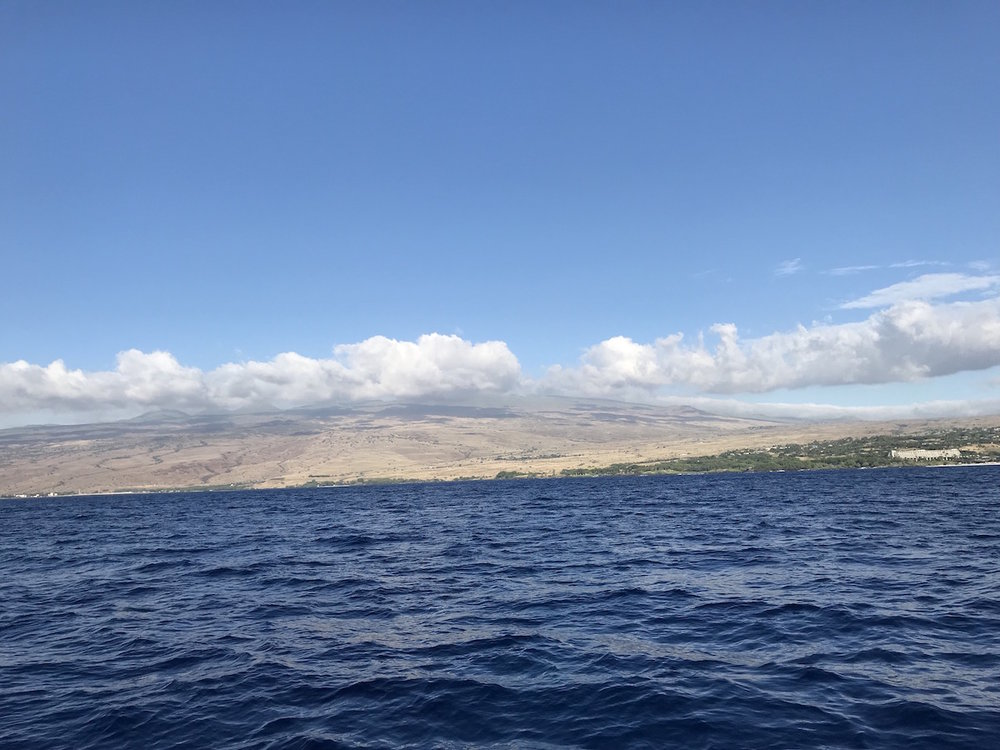 View of Kohala Mountain and the watersheds that connect the vulnerable forests with the sensitive coastlines.