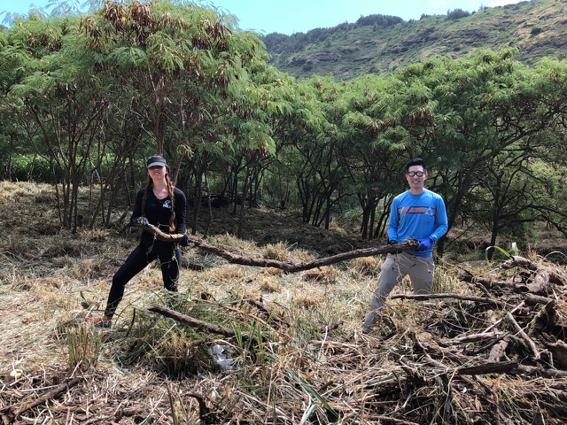 Senator Stanley Chang and Janae teaming up against a particularly heavy tree trunk.