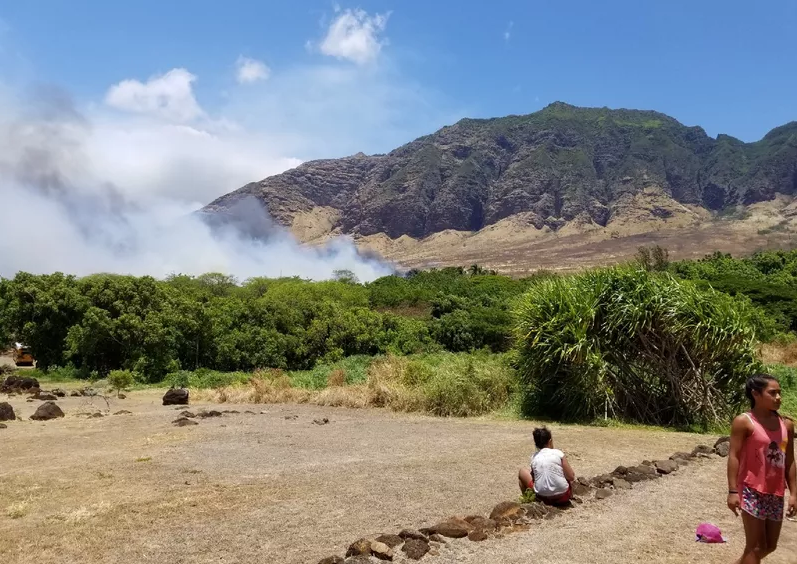 """Police are still looking for an arsonist they believe started four fires on Oahu's Leeward coast."" (Image: Hawaii News Now)"