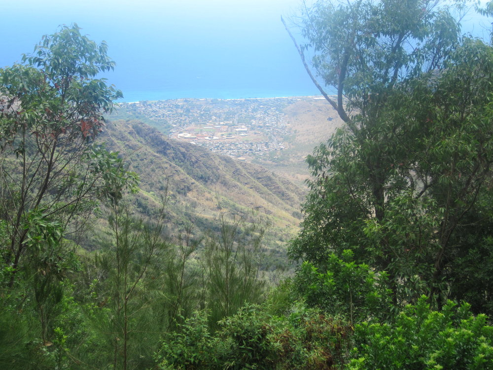 View of the wildland-urban interface of West Oahu from atop Palehua.