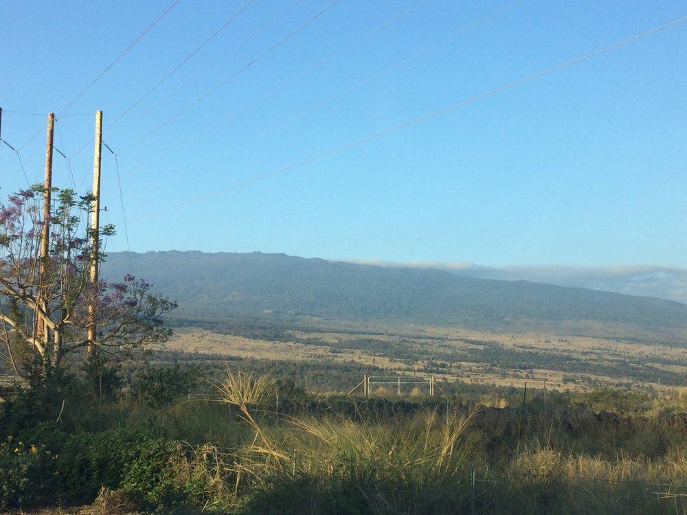 Hualalai and Puu Anahulu Fuels.JPG