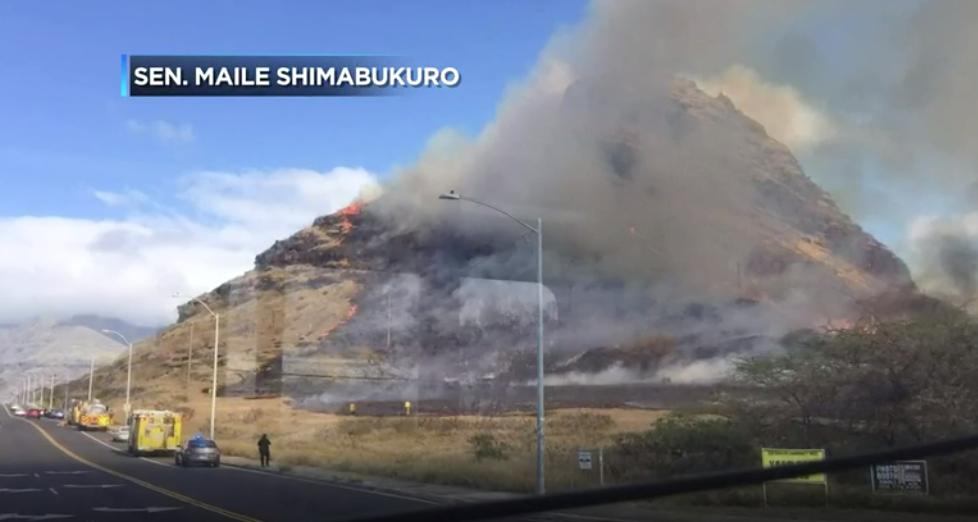 Footage from Senator Maile Shimabukuro broadcasted on Hawaii News Now.