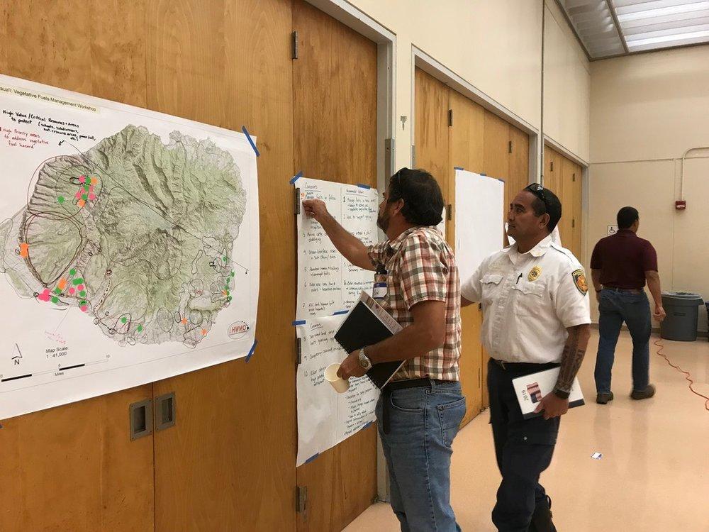 Kauai Vegetative Fuels Management Collaborative Action Planning Workshop_2_21_2019_27.jpg