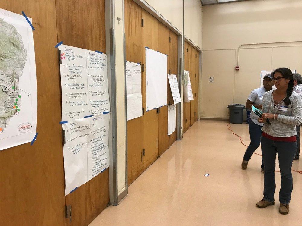 Kauai Vegetative Fuels Management Collaborative Action Planning Workshop_2_21_2019_28.jpg