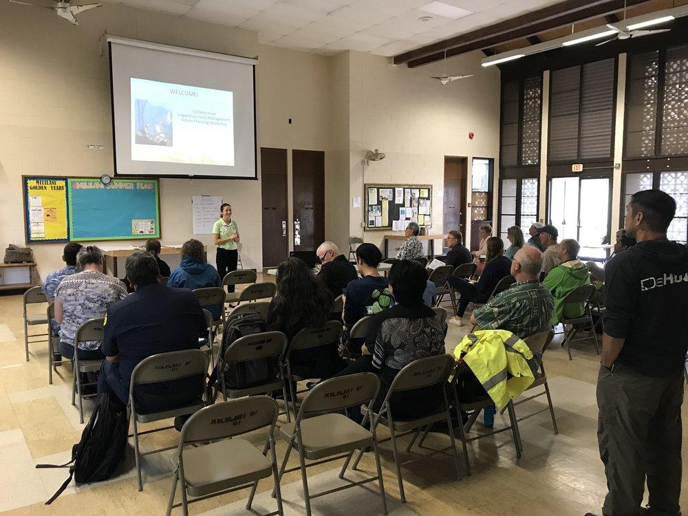 Oahu Vegetative Fuels Management Collaborative Action Planning Workshop_2_19_2019_1.jpg