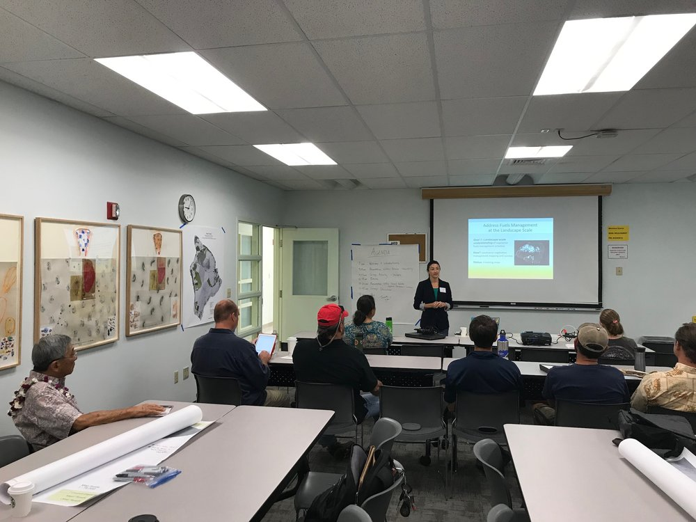 Hawaii Island Hilo Vegetative Fuels Management Collaborative Action Planning Workshop_2_22_2019_2.jpg